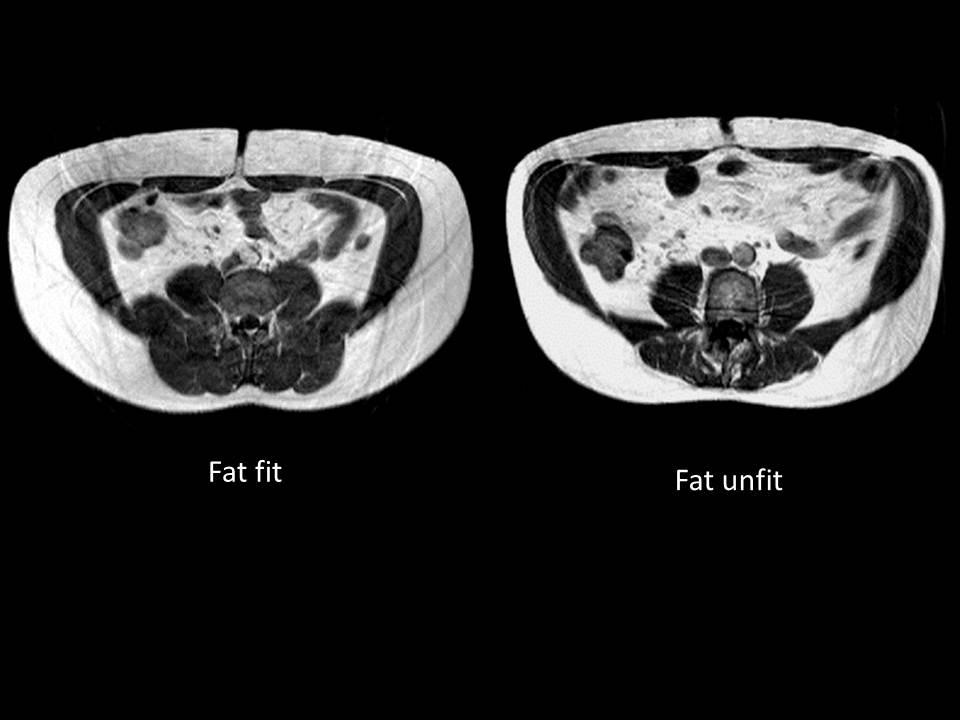 Fat-Fat_(FOTI)_image